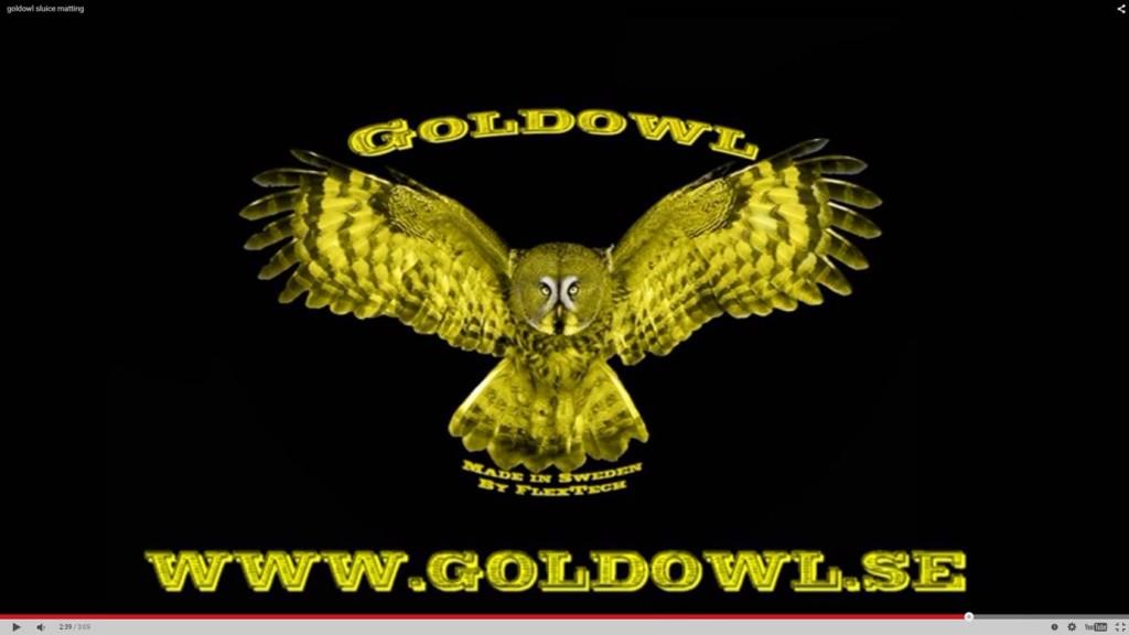 GoldOwl logo